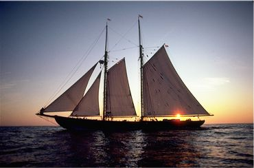 barcos yates veleros
