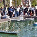 VIII Exposición de Modelismo Naval Estático y Radio Control Ciudad de Torrevieja