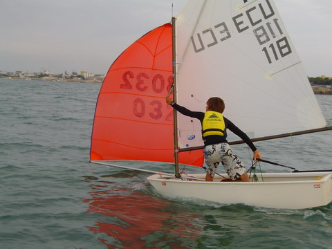 Todo acerca de los veleros Optimist